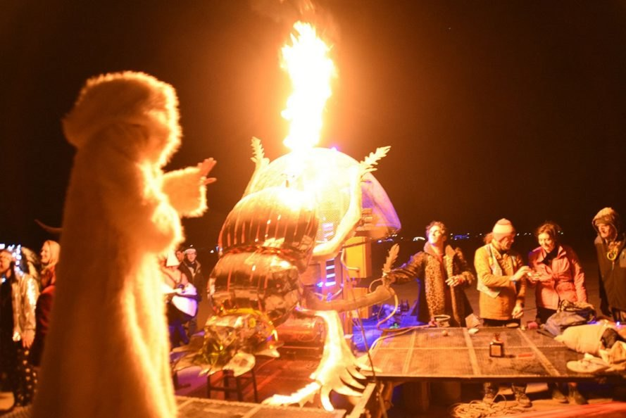 Dung Beetle project at AfrikaBurn 2018