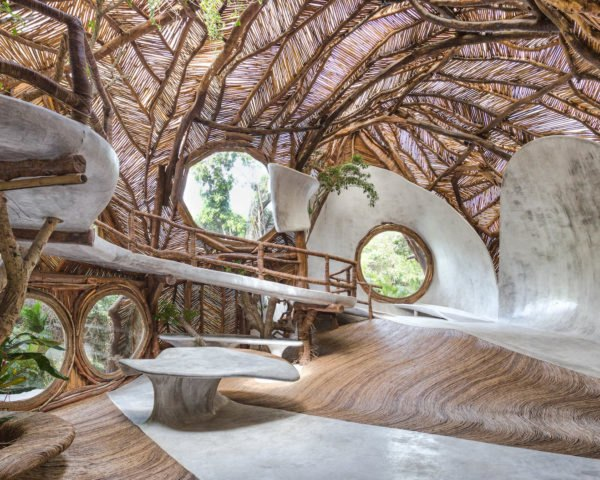 A curving interior space covered in branches and vines
