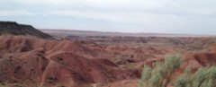 Land in the Petrified Forest National Park