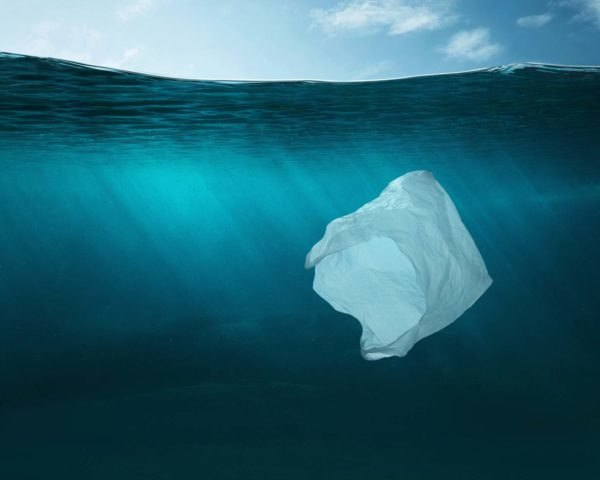 A white plastic bag underwater in the ocean