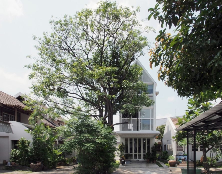 large tree in front of white building with pitched roof