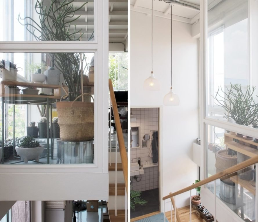 photos of white interior with plants