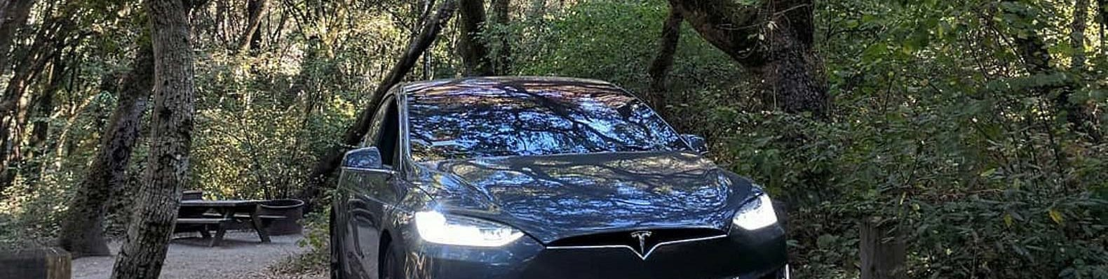 Tesla car under trees at Henry Cowell Redwoods State Park