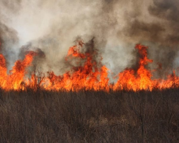 A wildfire burning grass and filling the air with smoke