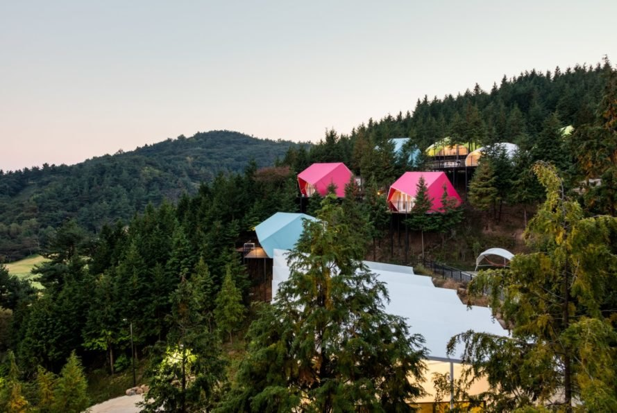 pink and blue camping pods deep in a green forest