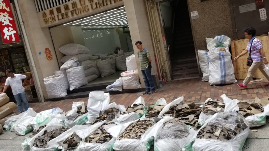 A shipment of shark fins in Hong Kong