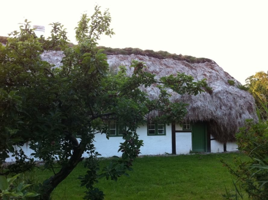 white home with large seaweed roof