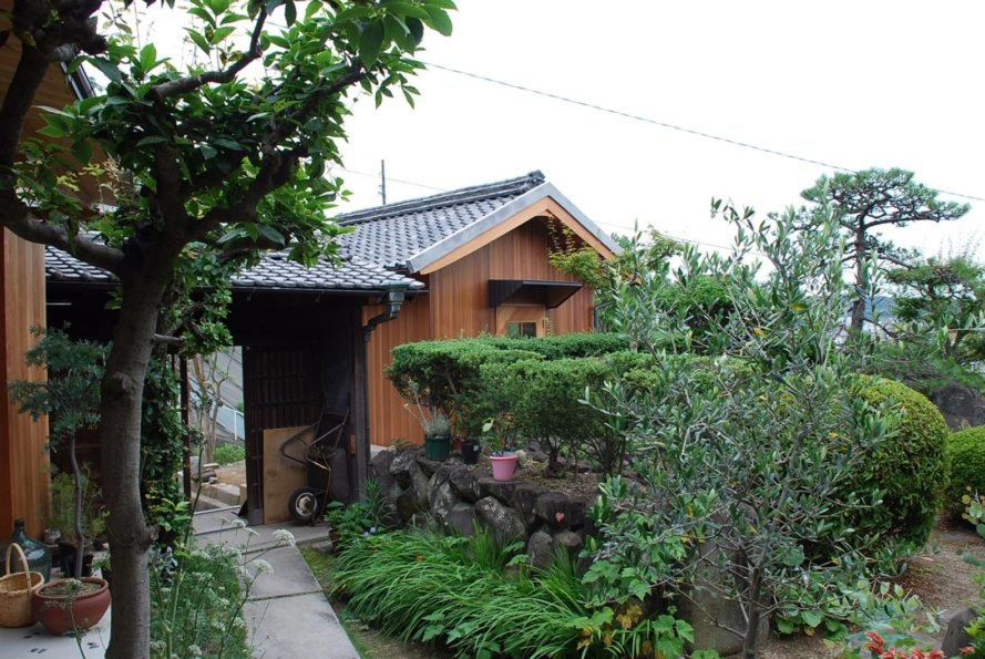 a walkway surrounded by greenery leading to a wooden hut