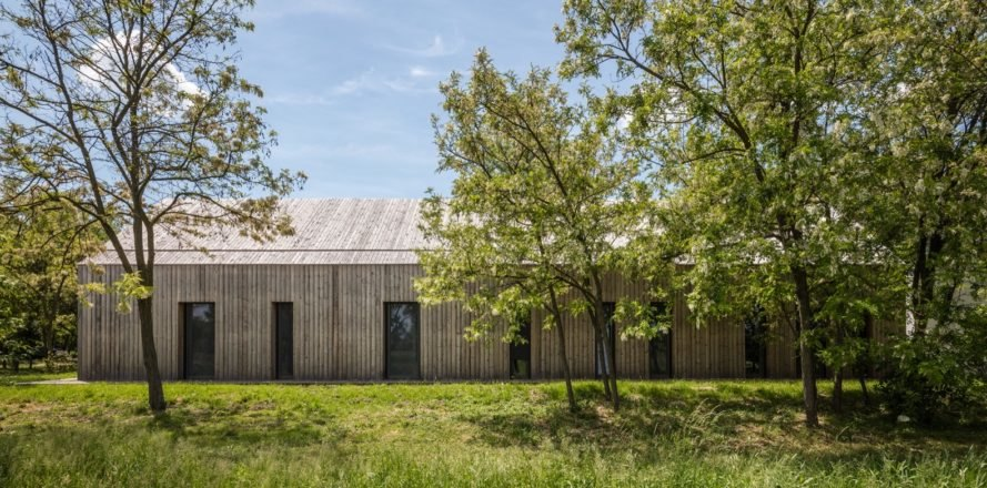 Timber home partially disguised by trees