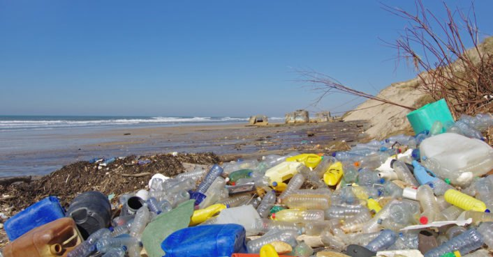 photo image New study suggests that plastic waste may be transformed into usable energy