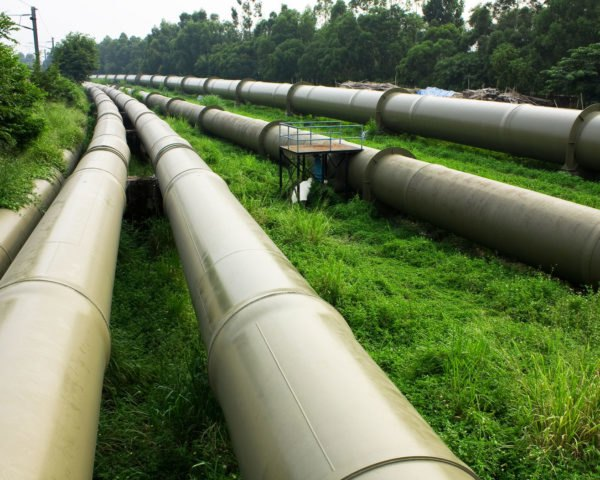 pipeline running through a forest