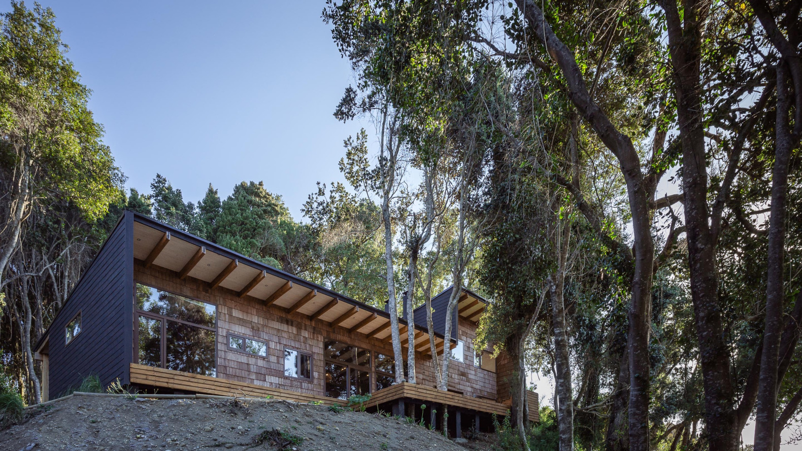 Lake house in Chile built with reclaimed wood melts into the forest