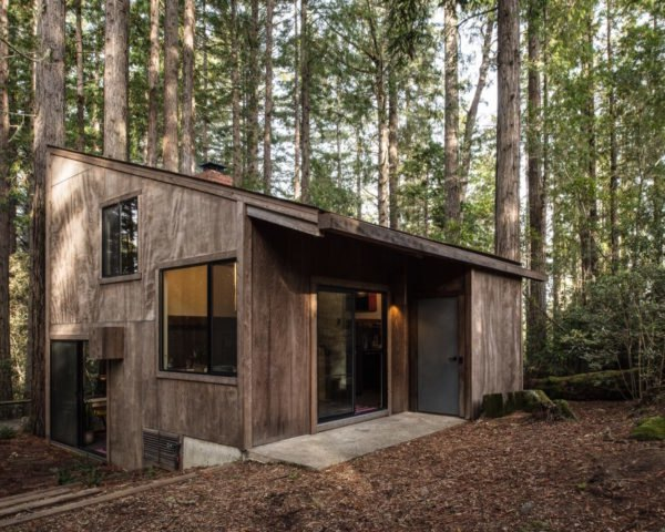 timber cabin in a redwood forest