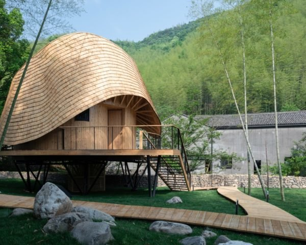 treehouse with curved wooden roof