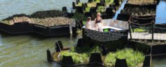Two people sitting on floating platform surrounded by other floating platforms with greenery