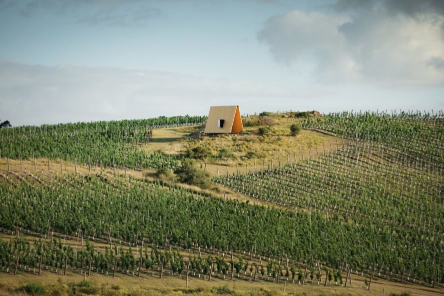 chapel and vineyards