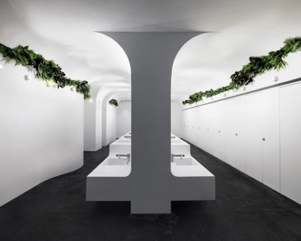 modern sinks in bathroom with plants near the ceiling