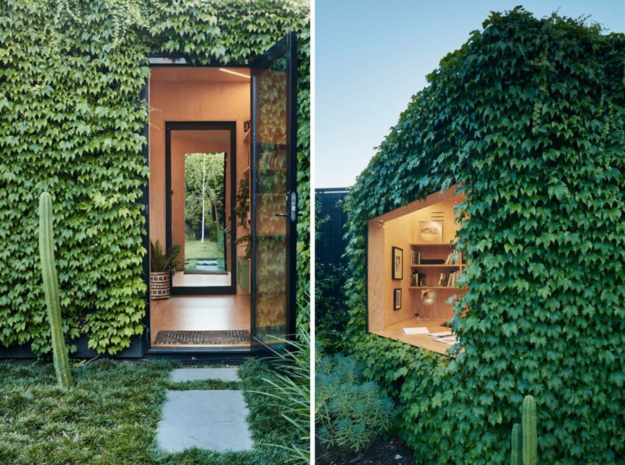 On the left, open door to the studio. On the right, double-glazed glass window surrounded by ivy.