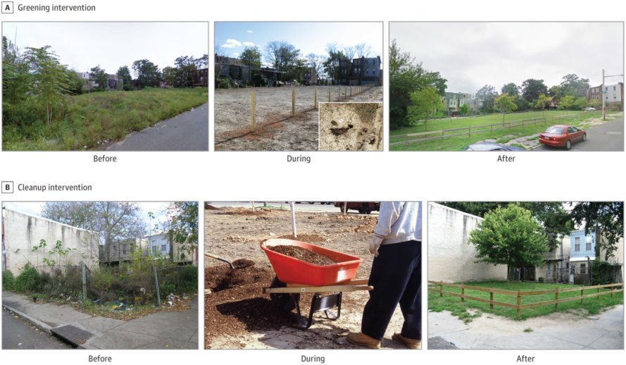 Before, during and after pictures of abandoned lots being renovated into green spaces and gardens