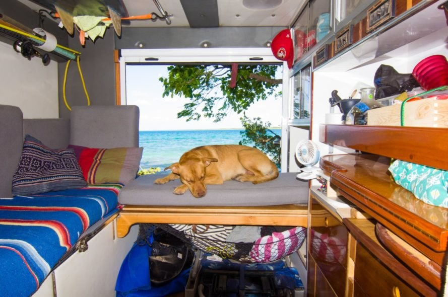a dog sleeping on a fold out table inside a van