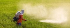 a man spraying pesticide on a field