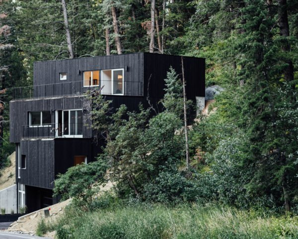 boxy black modern house among pine trees