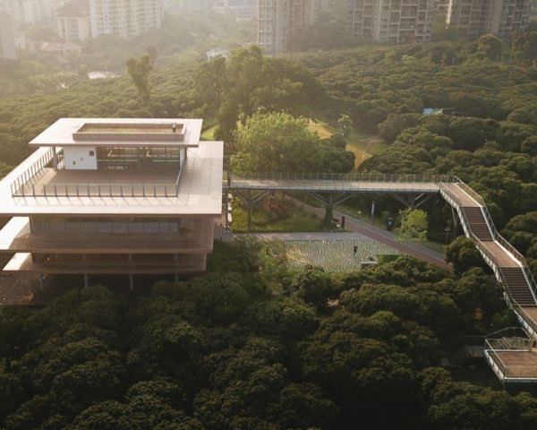 aerial view of multi-floor library with long wooden walkway surrounded by forest