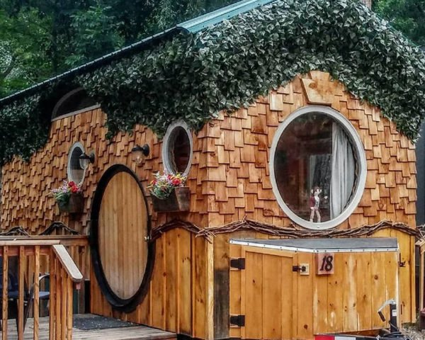 tiny wooden house with ivy-covered roof