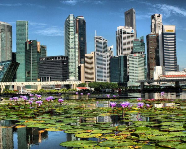 Singapore The City In A Garden Sets An Example For A Green Planet