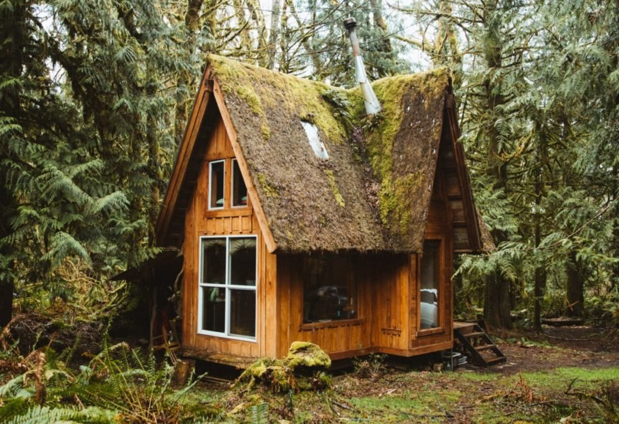 wooden cabin with mossy roof