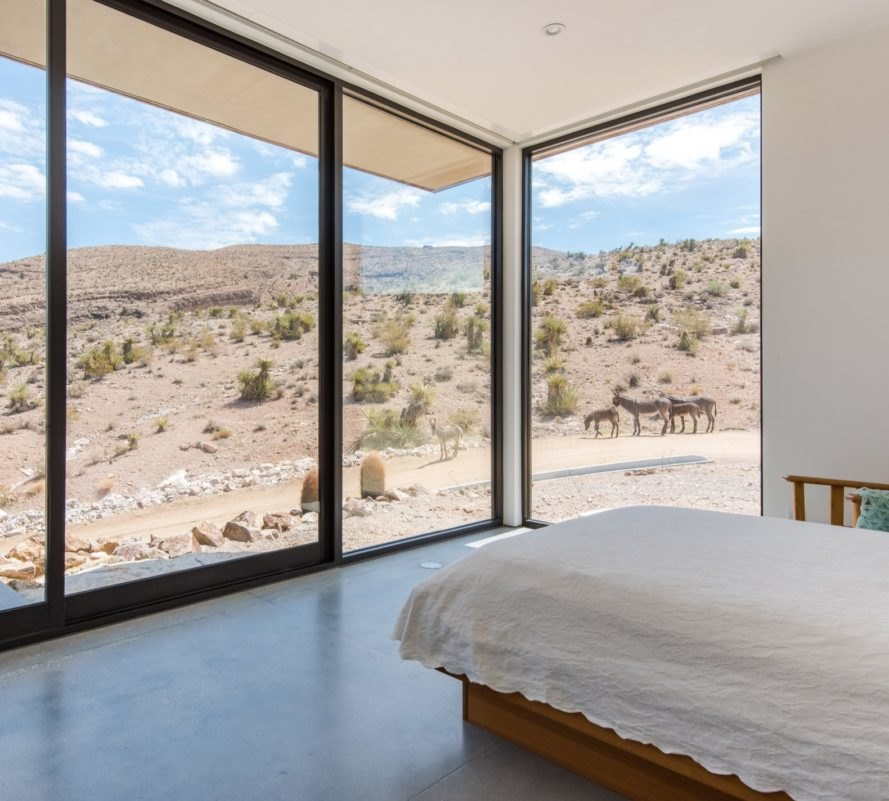 white bed facing glass walls with views of donkeys in a desert