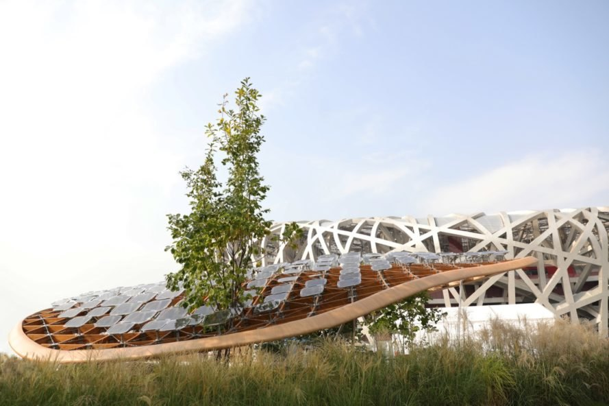 curved roof with lots of small solar panels and tree growing through roof