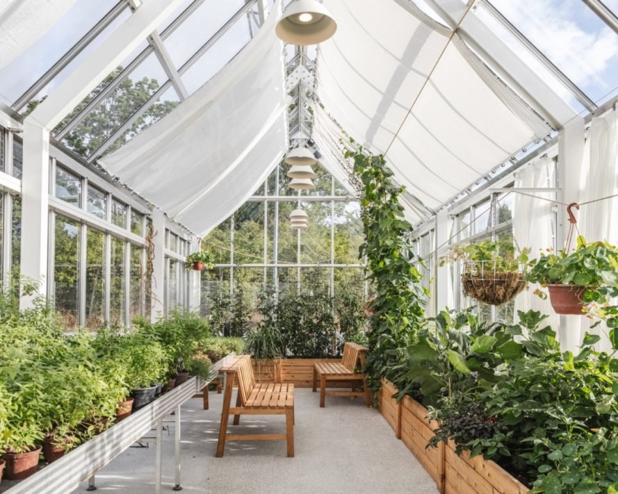 greenhouse with glass walls, gabled roof and lots of plants growing