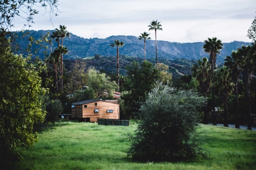 wooden tiny home surrounded by greenery