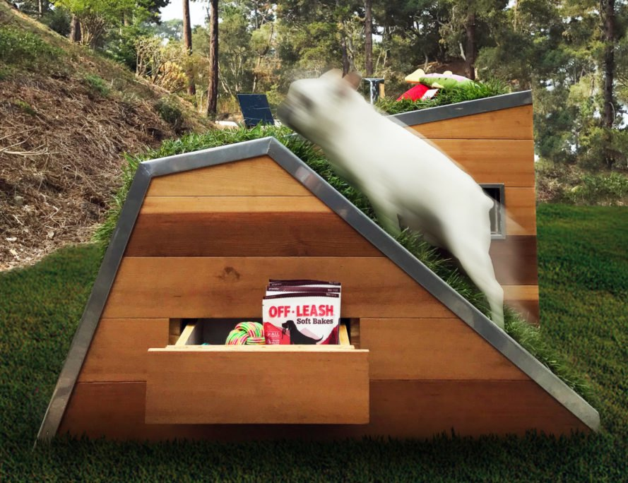 white french bulldog walking up ramp to green roof on dog house