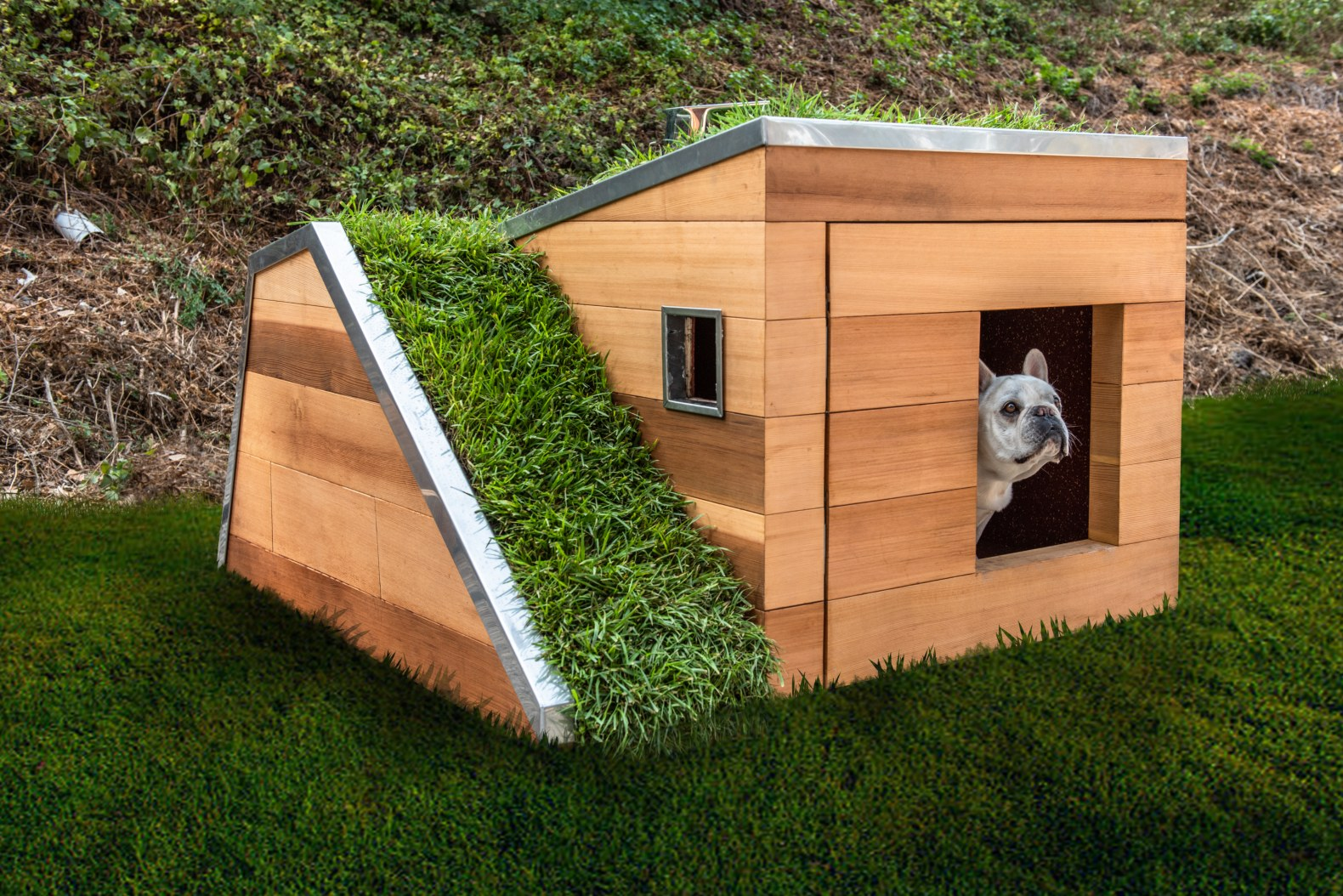This sustainable dog house has a green roof and solar-powered fan to keep cool