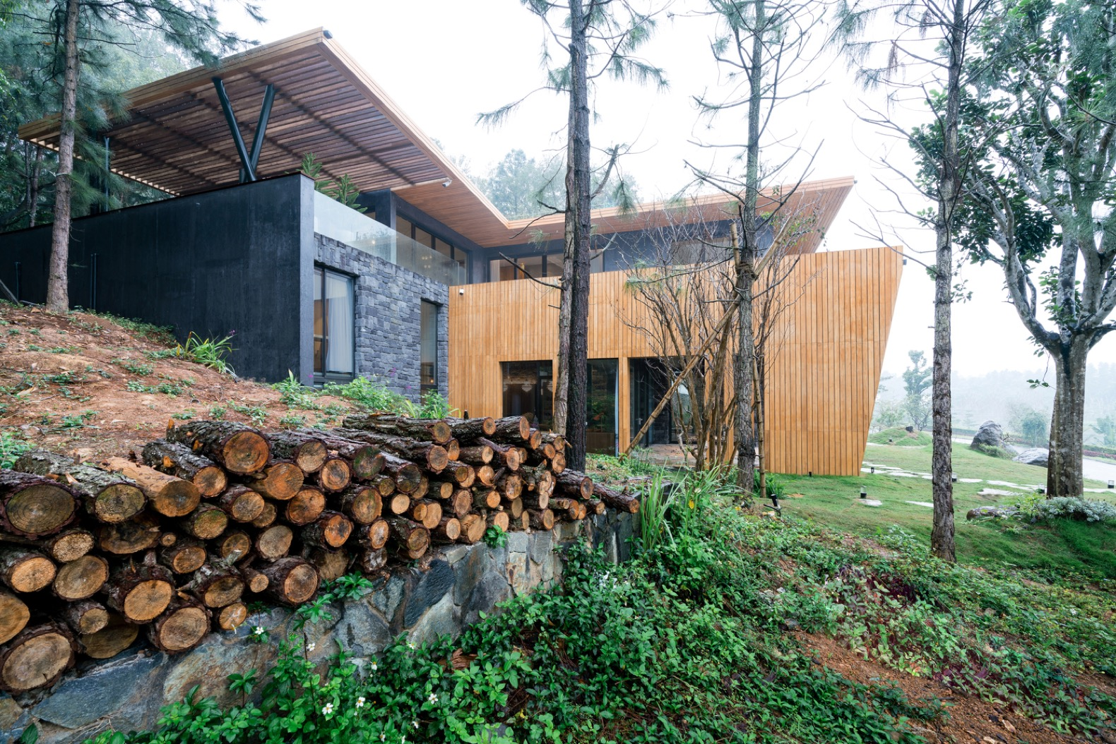 Nature-inspired Teak House welcomes Vietnam's lush forests indoors