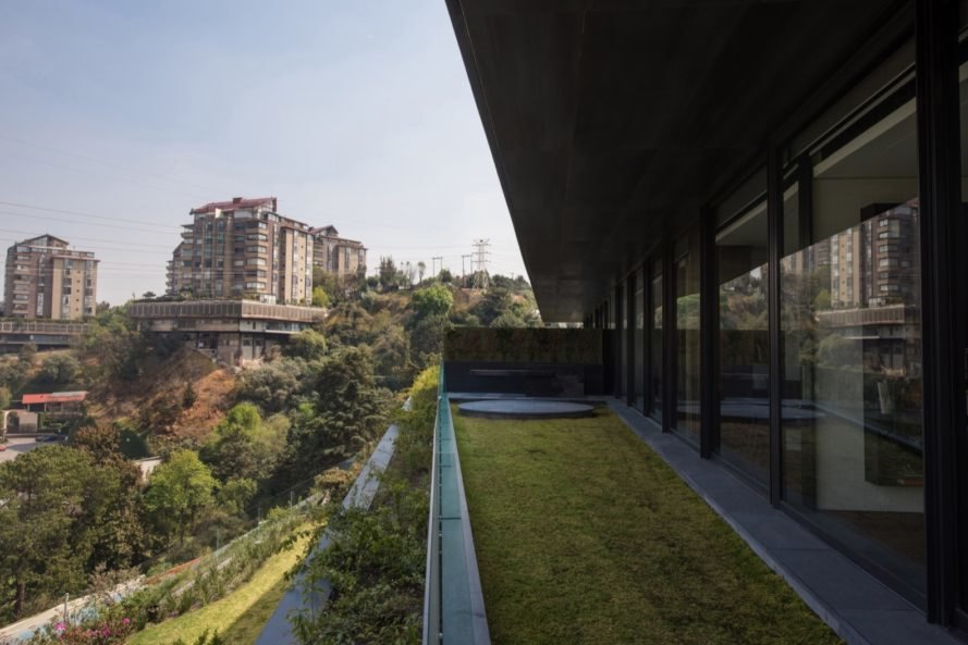 green roof with city views