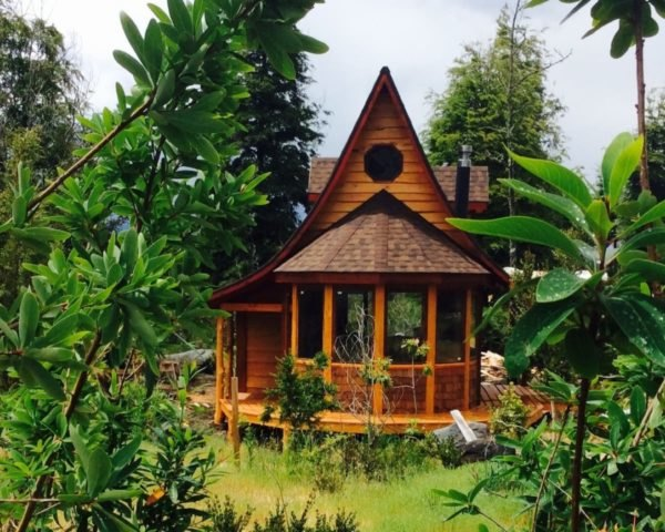 timber cabin with gabled roof surrounded by plants