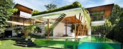 cropped close-up of white and timber home with pool in foreground and greenery draping over roofline