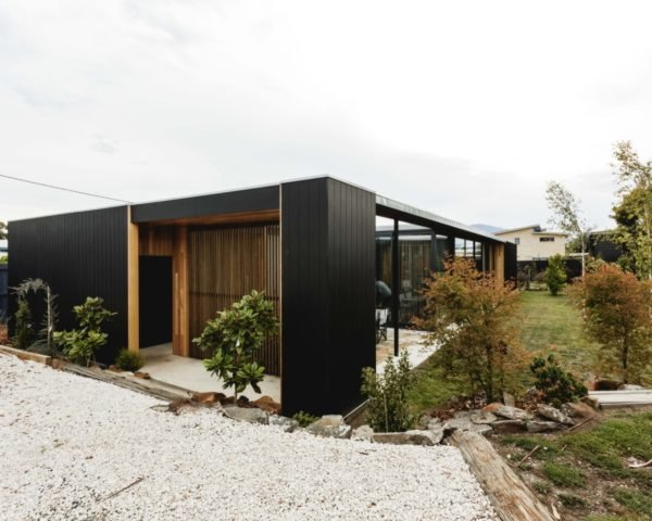 black timber home surrounded by plants