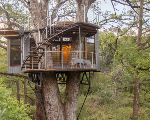 round treehouse with spiral staircase