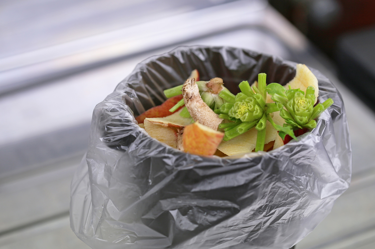 5 simple ways to reduce your food waste right now