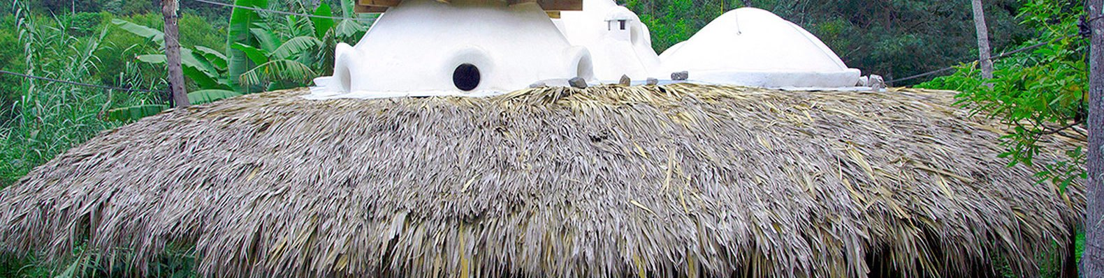 hut with thatched roof and white domes above the roof