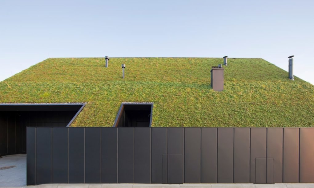 A solar-powered home hides behind a colossal, sloped green roof