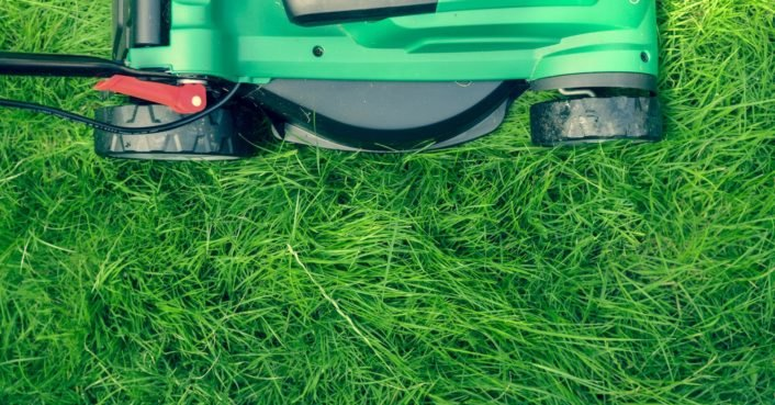 New study suggests it's time to replace modern, grassy lawns