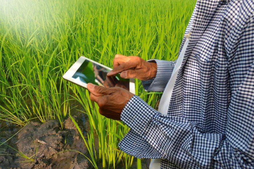 farmer using an electronic tablet