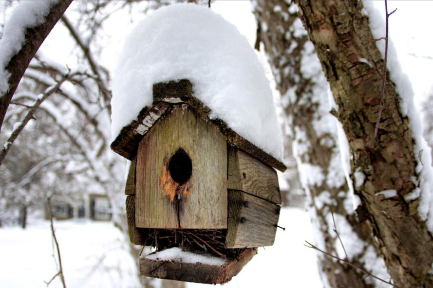 wooden birdhouse with snow on the roof