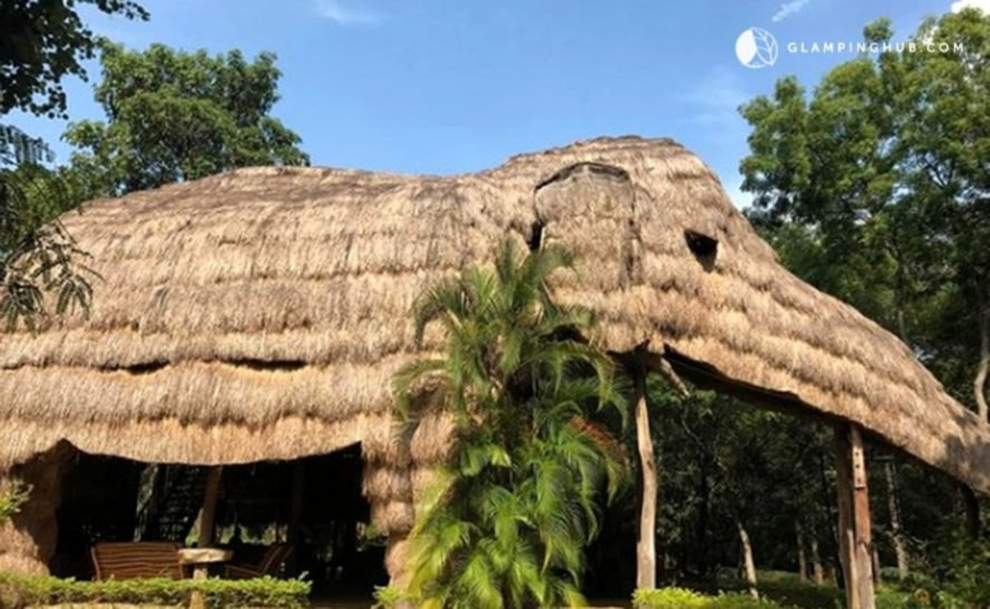 elephant-shaped straw hotel surrounded by trees
