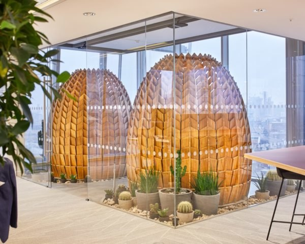 bamboo pods in an office